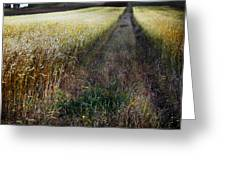 Ruralscape #1 Greeting Card