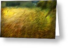Ruralscape #8. Field And Wind Greeting Card