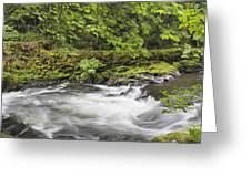 Rushing Water At Cedar Creek Washington State Greeting Card