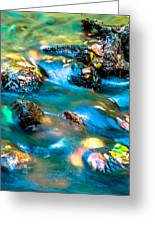 Rushing Water Over Fall Leaves Greeting Card