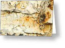 Rust And Peeling Paint Greeting Card