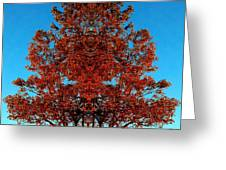 Rust And Sky 2 - Abstract Art Photo Greeting Card
