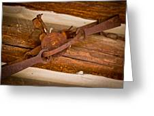 Rust Trapped On A Log - Old Trap - Casper Wyoming Greeting Card