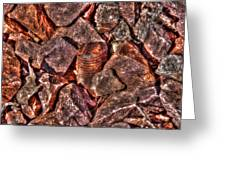 Rusted Bolt In The Rocks Greeting Card