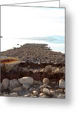 Rusted Pipe Thru Rock Path Greeting Card