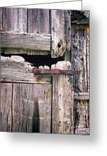 Rustic Barn Door Greeting Card