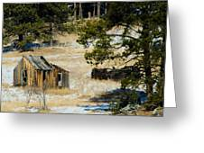 Rustic Cabin In The Pines Greeting Card
