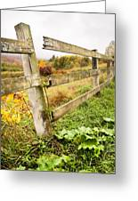 Rustic Landscapes - Broken Fence Greeting Card