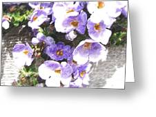 Rustic Planter Box Greeting Card by Beverly Guilliams