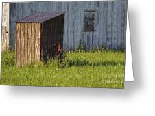 Rustic Pump House 20140718 Greeting Card