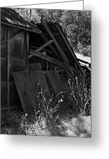 Rustic Shed 4 Greeting Card