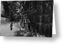 Rustic Shed 5 Greeting Card
