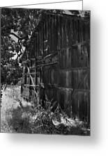 Rustic Shed 6 Greeting Card