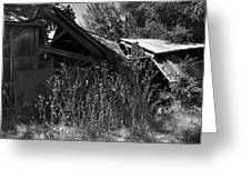 Rustic Shed 9 Greeting Card