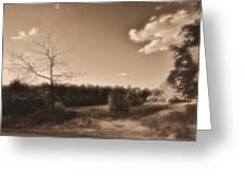 Rustic Greeting Card by Thomas  MacPherson Jr
