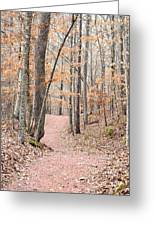 Rustic Trails In January 2013 Greeting Card