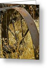 Rusty Old Wheel And Yellow Grasses Greeting Card