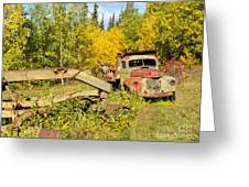 Rusty Truck And Grader Forgotten In Fall Forest Greeting Card
