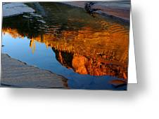 Sabino Canyon Reflection Greeting Card
