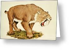 Sabretooth Cat Greeting Card