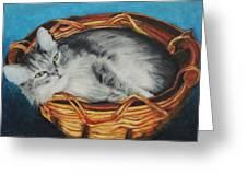 Sabrina In Her Basket Greeting Card