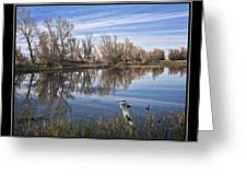 Sacramento Wildlife Refuge Pond With Blue Heron Greeting Card