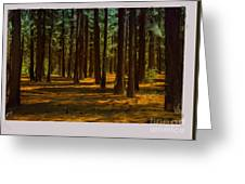 Sacred Warrior Grove Greeting Card