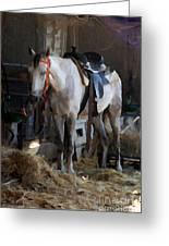 Sad Horse Greeting Card