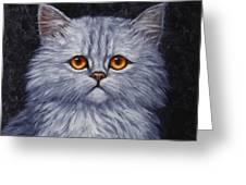 Sad Kitty Greeting Card