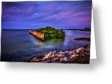 Safe Haven Greeting Card by Marvin Spates