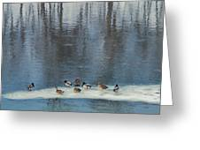 Safehaven   Indiana   Winter Greeting Card