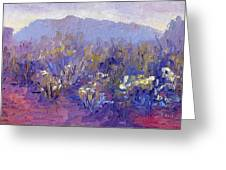 Sage Brush In Winter Light Greeting Card