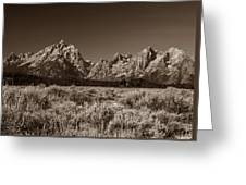 Sagebrush And Tetons Greeting Card
