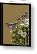 Saguaro Cactus Flower 6 Greeting Card
