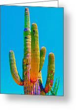 Saguaro Colors Greeting Card