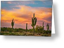 Saguaro Desert Life Greeting Card