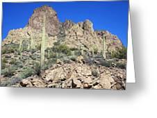 Saguaro On The Apache Trail Greeting Card