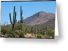 Saguaros And Mountain Greeting Card