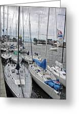 Sail Boats Docked For The Night Greeting Card