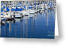 Sail Boats Docked In Marina Greeting Card
