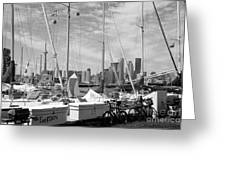 Sail Boats Toronto On Greeting Card