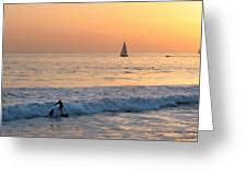 Sailboats And Surfers Greeting Card