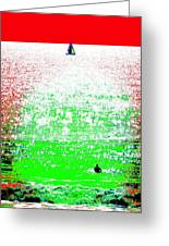 Sailboat And Swimmer -- 2a Greeting Card by Brian D Meredith