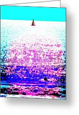 Sailboat And Swimmer -- 2d Greeting Card by Brian D Meredith