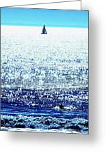 Sailboat And Swimmer Greeting Card by Brian D Meredith