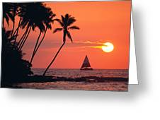 Sailboat At Sunset Greeting Card