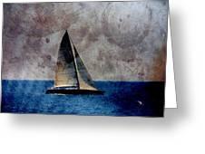 Sailboat Bird W Metal Greeting Card
