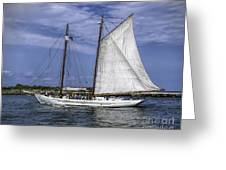 Sailboat In Cape May Channel Greeting Card