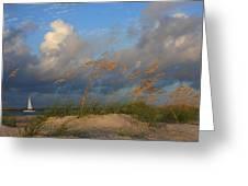 Sailboat Wrightsville Beach North Carolina  Greeting Card