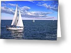Sailboats At Sea Greeting Card